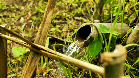 VideoHive Bamboo Water Feature 04 12177844