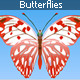 Butterflies - ActiveDen Item for Sale