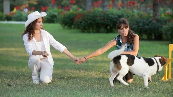 VideoHive Girls And Their Pets 12186224