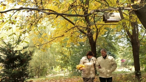 VideoHive Mature Couple In Park 12189083