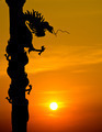 Dragon statue silhouette with sunset. - PhotoDune Item for Sale