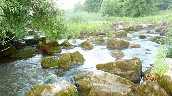 VideoHive Fast Flowing River With Stones In The Water 12192877
