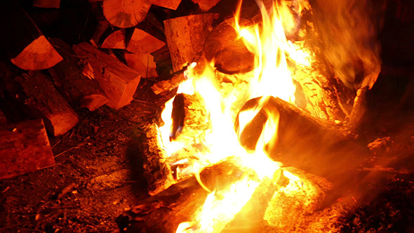 VideoHive Midnight Bonfire Or Campfire 12193643