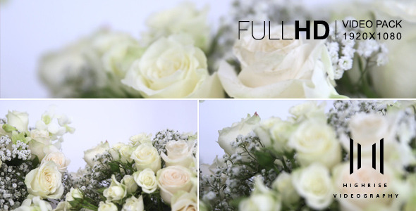 VideoHive Flower-4 Pack 12208679