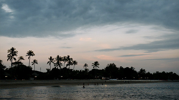 VideoHive Tropical Palm Beach after Sunset 12210698