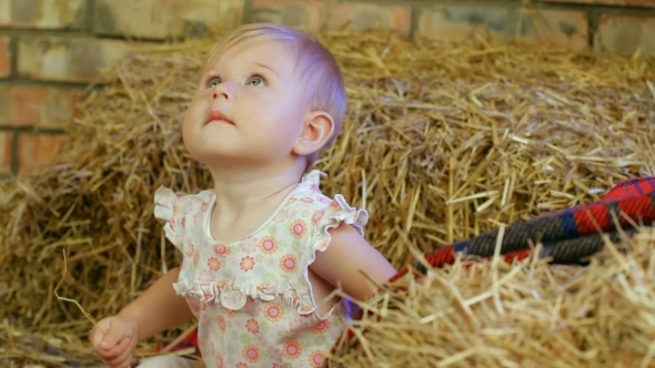 VideoHive Girl In A Haystack 12212505