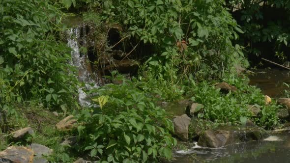 VideoHive Waterfall in The Park River Banks Sunny 12212784