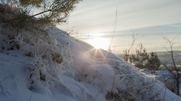 VideoHive Beautiful Winter Landscape Sunlight 12219054