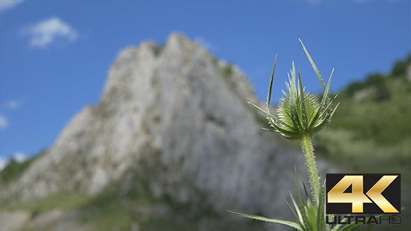 VideoHive Steep High Cliff 12222847