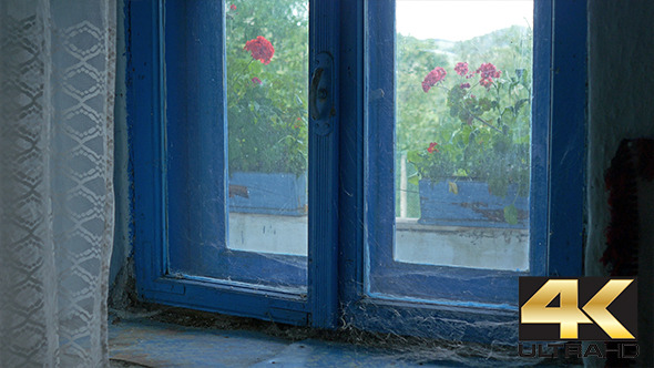 VideoHive Forgotten Window with Spider Web 12226493