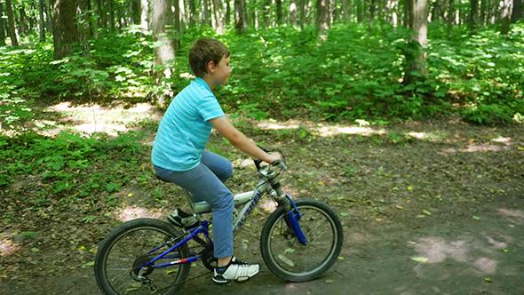 VideoHive Boy Biking On Forest Trails 12231968