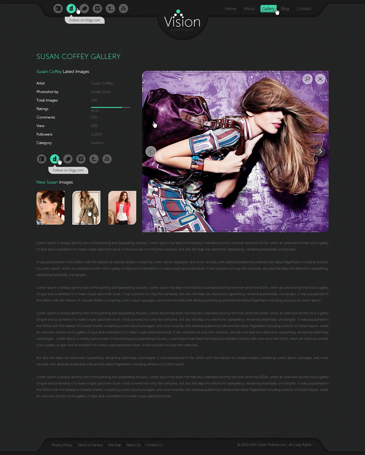 Vision Portfolio, Photography Template