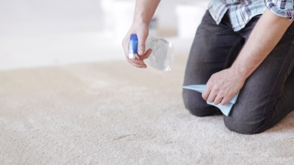 VideoHive Man With Rag And Stain Remover Cleaning Carpet 12239089