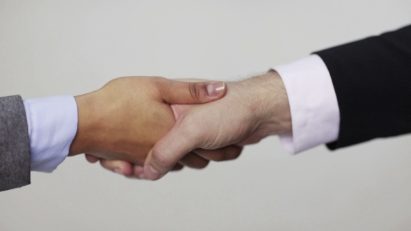 VideoHive Business Man And Woman Shaking Hands 12239196