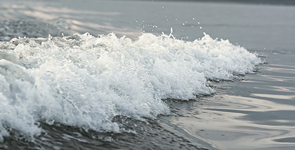 VideoHive Tide In 12242181