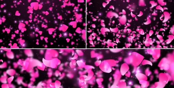 VideoHive Pink Hearts And Petals 12267218