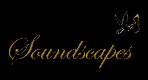<h3>Soundscapes</h3>