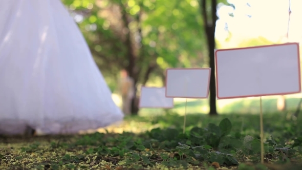 VideoHive Wedding In A Park 12275083