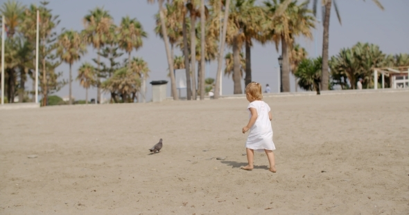 VideoHive Little Girl Chasing a Seagull 12279749