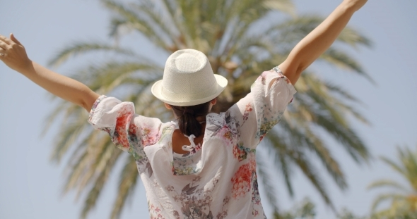 VideoHive Rear View Of Woman On Palm Beach With Open Arms 12279763