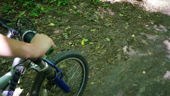 VideoHive Boy Biking On Forest Trails 12281922