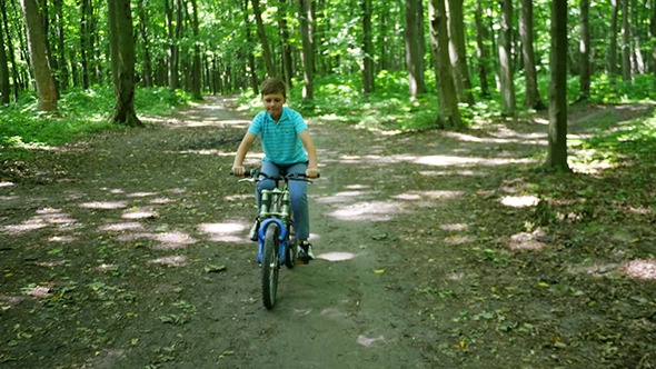 VideoHive Boy Biking On Forest Trails In Day 12281933