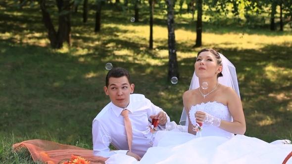 VideoHive Bridal Picnic 12292479