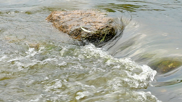 VideoHive Fast Flowing River With Stones In The Water Slow 12298870