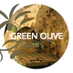 Green Olive–Stylish Blog and Portfolio