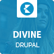 Divine - Professional Business Drupal Theme