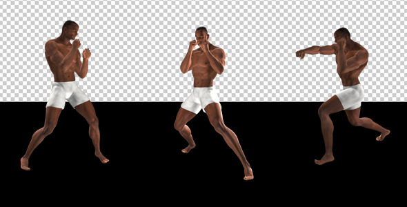VideoHive Fight Club Boxing Black Male Pack of 6 12322847