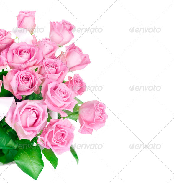 Big Roses Bouquet - Stock Photo - Images