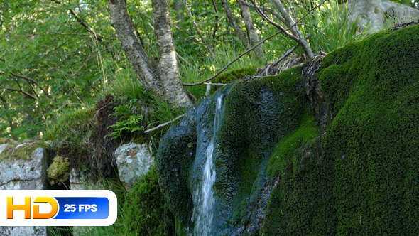 VideoHive Small Waterfall and Moss Covered Rock 12329189