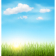 Green Grass Lawn with Clouds and Sun on Blue Sky