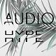 audiohype