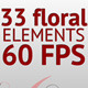 33 floral elements (60 fps) - VideoHive Item for Sale