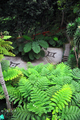 Madeira - Monte Palace Tropical Garden– Monte, Madeira - PhotoDune Item for Sale