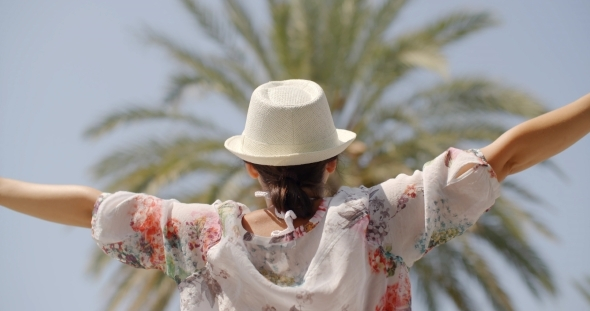 VideoHive Rear View Of Woman On Palm Beach With Open Arms 12388898