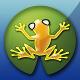 Mind Frog