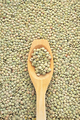 Legume - wooden spoon and dried green lentils - PhotoDune Item for Sale