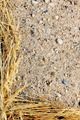Detail of dry grass hay and sand - natural frame - PhotoDune Item for Sale