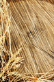 Detail of wooden cut texture and dry grass hay - frame - PhotoDune Item for Sale