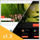 Duotive 2WO - WordPress Theme
