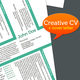 CV+Cover Letters, 3 Different Styles - GraphicRiver Item for Sale