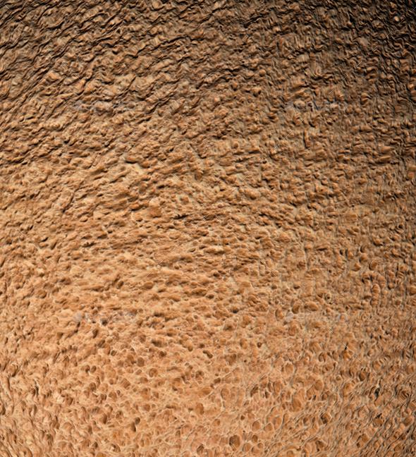 Bread Seamless Texture By Suljo