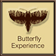 ButterflyExperience