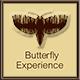 ButterflyExperience