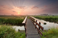 beautiful sunrise over bike bridge in farmland