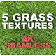 5 Grass Tileable Textures