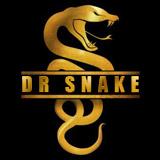 Dr_snake